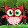 Owl Escape
